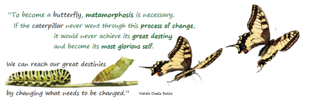 https_chaellas.files.wordpress.com201403caterpillars-metamorphosis-to-butterfly-chaellas-wordpress-com-quote